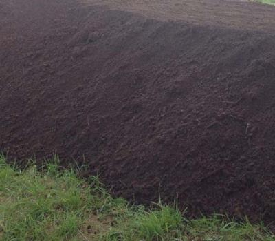 Фото плодородного грунта